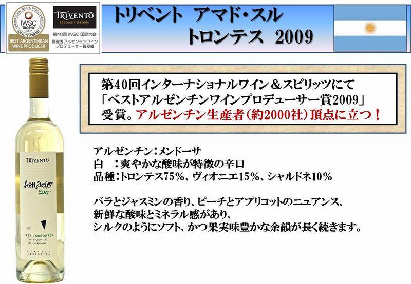 20101115b.jpg
